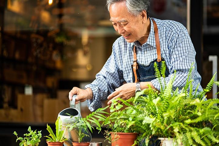 Older asian man watering plants
