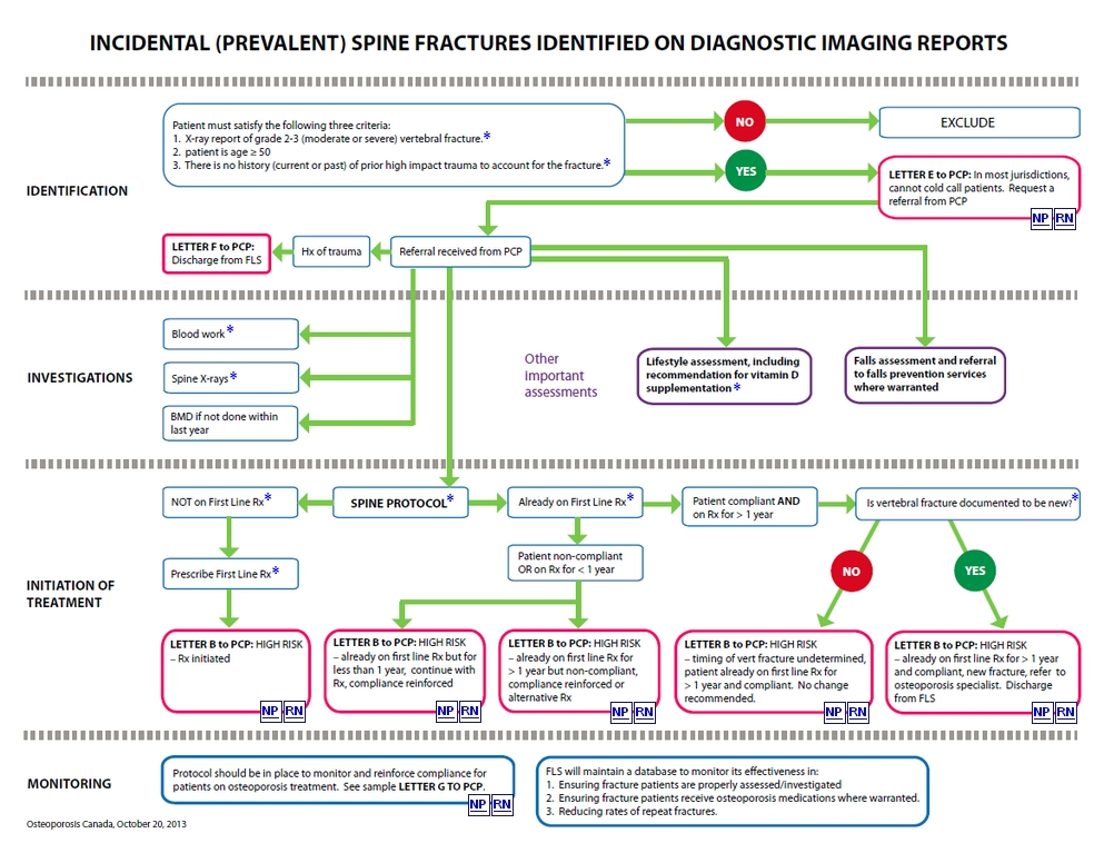 Hip Fractures and Acute Clinical (Symptomatic) Spine Fractures